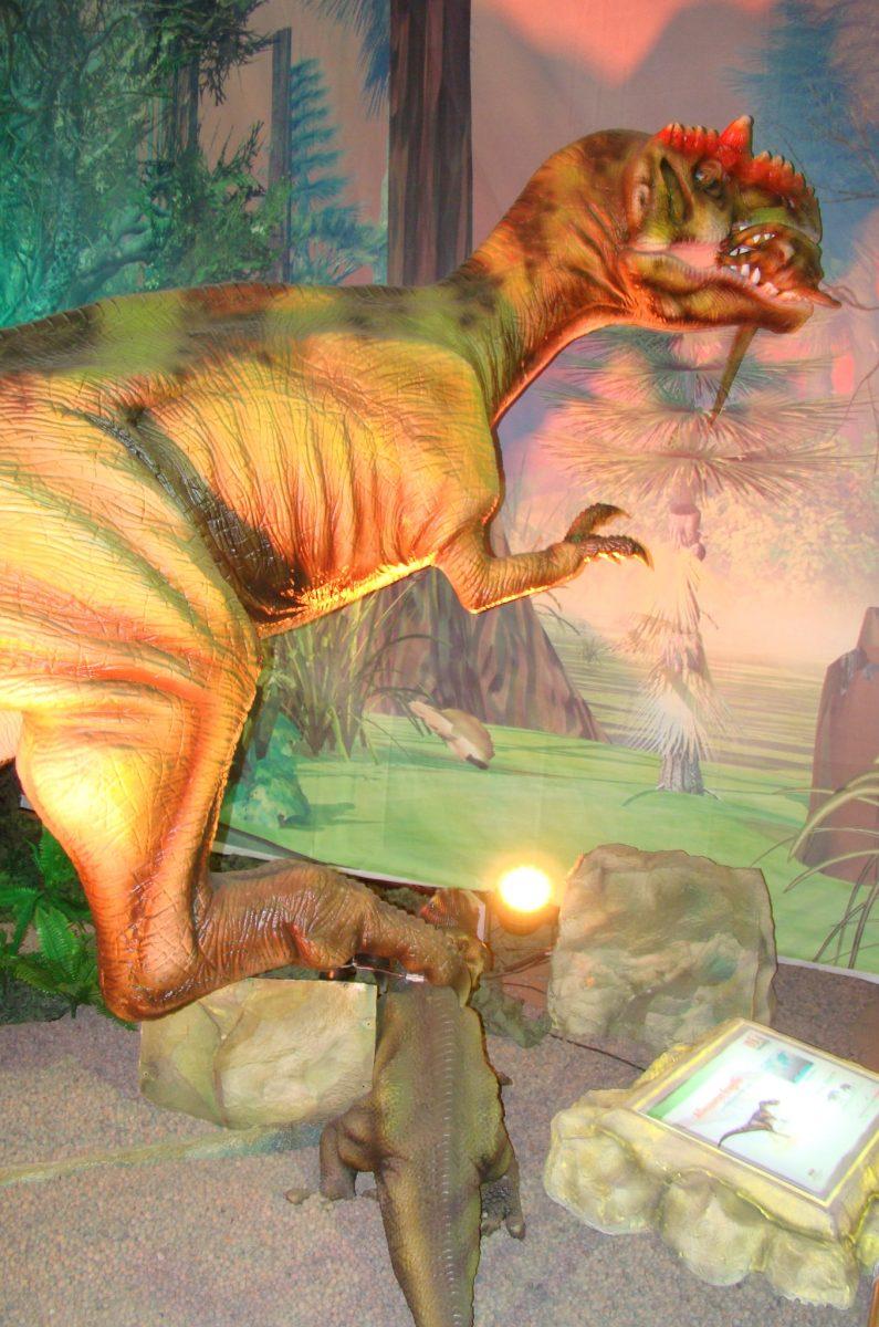 Proyectos | Exhibición Era De Los Dinosaurios